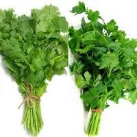 سبزیجات برگی