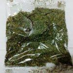 فروش انواع سبزی خشک بیجار