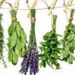 سبزیجات درجه یک معطر
