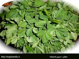 صادرات سبزی خشک