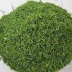 سبزی خشک تبریز