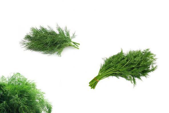 سبزی خشک شوید